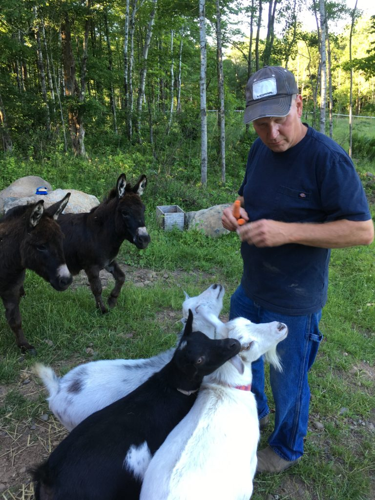 Mike and Donkeys