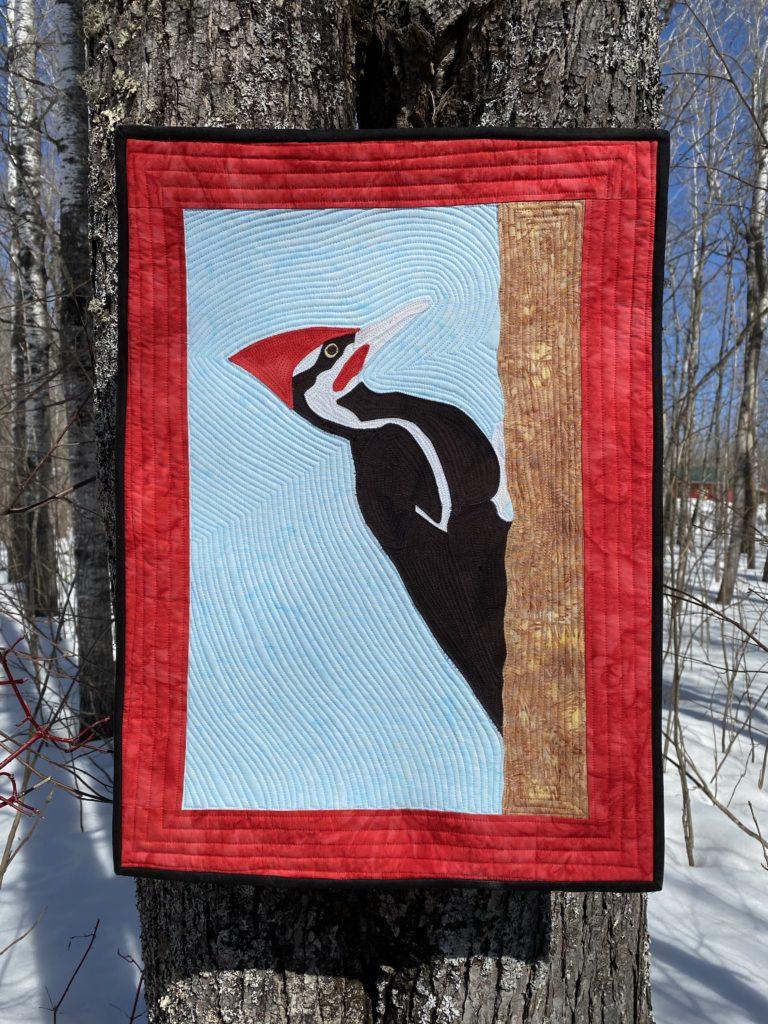Woodpecker Cover Shot